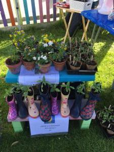 spring fair preschool plants in wellies